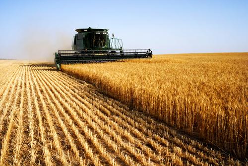 Trabajadores Autónomos agrícolas: los 6 puntos clave